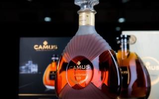 Коньяк Сamus (Камю) — знаменитый французский напиток