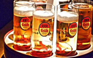 Пиво Кёльш (Kölsch) — история и особенности немецкого напитка