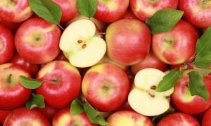 Как поставить брагу из яблок для самогона