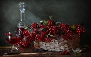 Самогон на калине: рецептура приготовления и полезные свойства