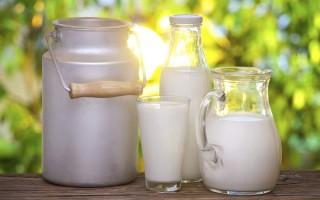 Как очистить самогон молоком в домашних условиях