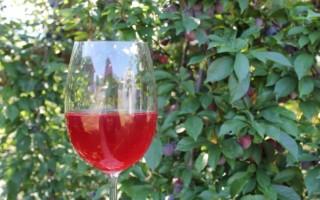 Изготовление винных дрожжей своими руками
